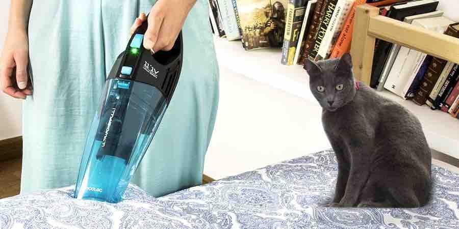 Aspirador de mano cecotec para uso con animales